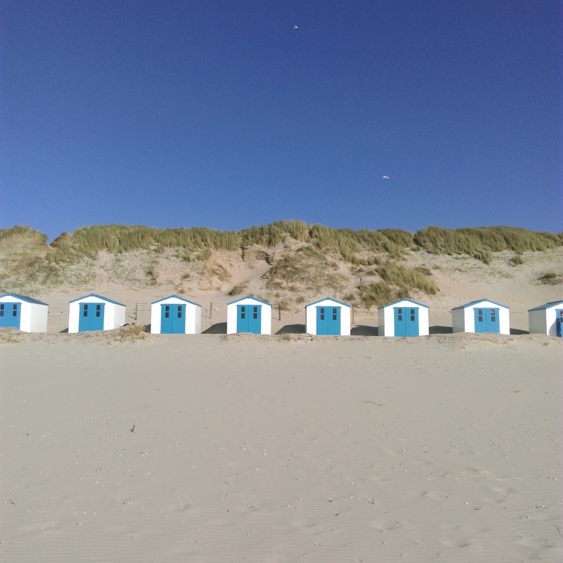 Texel - Paal 19