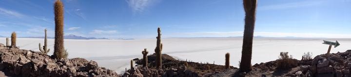 Cactus Island - Salar de Uyuni