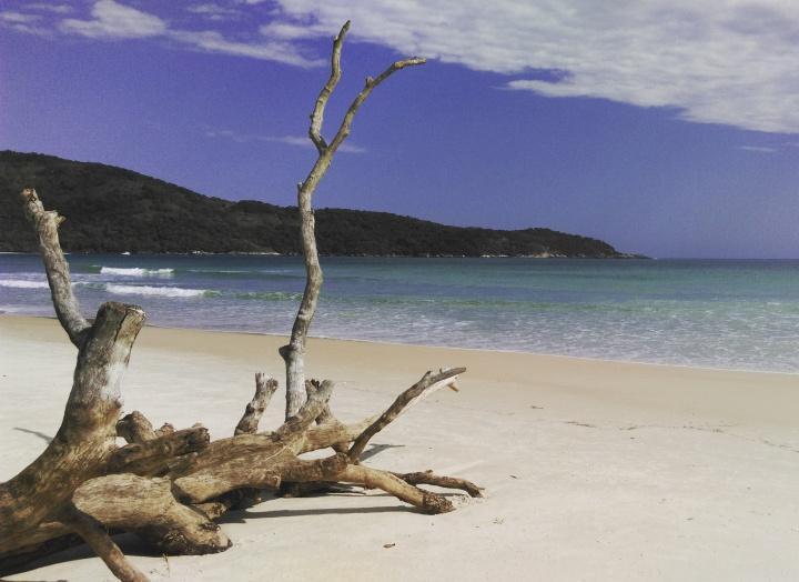 Praia de Lopes Mendes