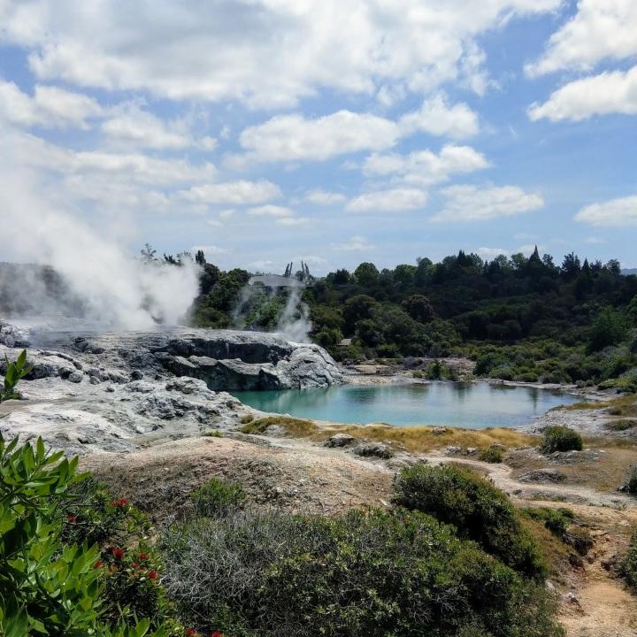 Whakarewarewa geyser